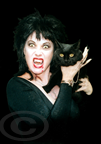 Vamp and Cat